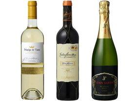 重松貿易/情熱のスペインワイン 3本セット 750ml×3