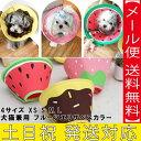 送料無料 犬猫兼用 エリザベスカラー 犬 ペット 犬のおもちゃ 犬おもちゃ 犬用のおもちゃ 犬用 犬のグッズ 犬用のグッ…