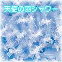 天使の羽シャワー