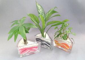 デルタグラス 微粒カラーサンド3鉢セット