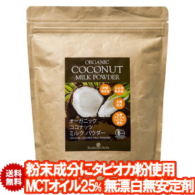 有機ココナッツミルクパウダー 400g 1袋 JASオーガニック 無漂白 安定剤不使用 ココナッツミルク粉 グルテンフリー ソイフリー 小麦粉不使用