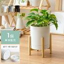 プランター 鉢 おしゃれ フラワーポット 植木鉢 観葉植物 受け皿一体型 鉢植え 鉢 室内 ガーデニング インテリア 円形…