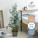 光触媒 観葉植物 オリーブ オリーブの木 106cm フェイクグリーン 光触媒人工植物 おしゃれ 造花 インテリアグリーン …