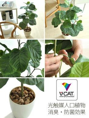 【送料無料】日常に触媒媒とグリーンの癒しを。光触媒人工植物ウンべラータ