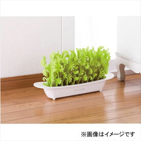 サンメニー:エコロジー加湿器゛ミスティガーデン2nd゛ (アップルグリーン) U602-01