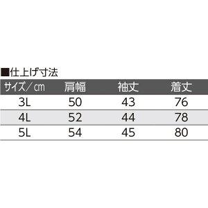 icn-crf-00004299_1.jpg