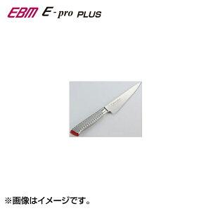 icn-ebm-00017533