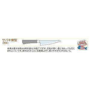 icn-ebm-00017533_2