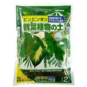 花ごころ:観葉植物の土 2L