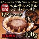 エルサルバドル・シティオ・デ・マリア400g【コーヒー豆】Qグレード認定高級品種農園指定レインフォレスト認証【ストレートコーヒー】【送料無料】ゆうパケット専用※日時指定できません