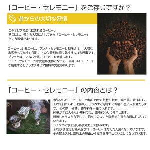 【送料無料】【ゆうパケット】エチオピア・モカ・シダモ(100g×2袋)/コーヒーメール