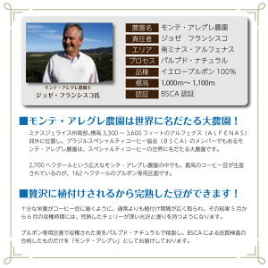【スペシャルティコーヒー】【送料無料】【ゆうパケット】ブラジル・モンテアレグレ(100gx4袋)/コーヒーメール