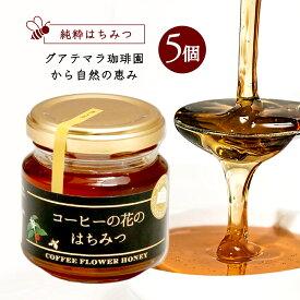 純粋はちみつ コーヒーの花のはちみつ (120g×5個)600g/メル・ソルグルメシリーズ
