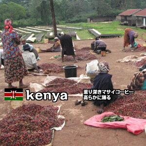 コーヒー豆 100g 【ケニア マサイAA】自家焙煎 珈琲豆 レギュラーコーヒー スペシャルティコーヒー スペシャリティコーヒー アイスコーヒー アイス珈琲 アイス 水出しコーヒー 焙煎豆 お試し