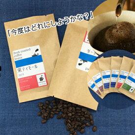 【送料無料】6種類のコーヒー豆から選べる!スペシャルティコーヒー●お試し2個セット●注文後 焙煎!100g×2個で美味しいコーヒー20杯分!スペシャリティコーヒー レギュラーコーヒー 珈琲豆 自家焙煎 煎りたて 珈琲 お試しセット コーヒーセット 苦味 甘味