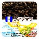グアテマラ/ガテマラ 送料無料 柑橘系のシトラスフルーツの香りに豊かなコクとキレ グァテマラSHB 深煎り フレンチロースト 250g メール便 コーヒー豆 レギュラーコーヒー アラビカ豆 コヒー豆 ポイント消化 深煎りコーヒー豆 内祝い 父の日 父 日 退職祝い お返し グルメ