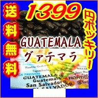 グアテマラ/ガテマラ 送料無料 柑橘系のシトラスフルーツの香りに豊かなコクとキレ グァテマラSHB 深煎り フレンチロースト 250g メール便 コーヒー豆 レギュラーコーヒー アラビカ豆 コヒー豆 ポイント消化 深煎りコーヒー豆 内祝い お年賀 ホワイトデー お返し グルメ