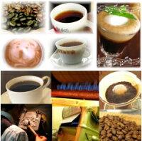おいしいコーヒー|コーヒー豆送料無料の通販|コーヒーばかの店