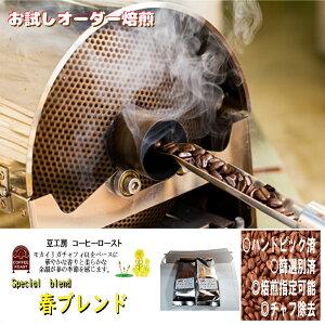 コーヒー豆 送料無料 1000円 202 g(生豆)- 春 ブレンド (焙煎により10%程度減少します。)ランク 1 スペシャリティー 美味しい,浅煎り,深入り,中深入り,中煎り-焼き立て-苦味 香り ブレンド