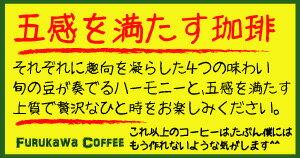 ワンランク上の鉄人!組み合わせ自由の美味しいセレクテッド・コーヒーコレクション500g×4個セット・合計2kg【4つ選べる】【送料無料】【コーヒー送料無料】【ブレンドコーヒー】●このコーヒーがコーヒー探しの最終着地点になるかも。
