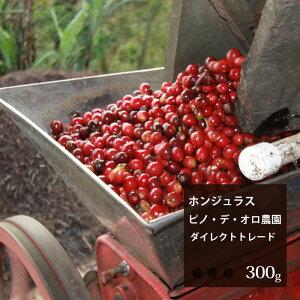 ホンジュラス ピノ・デ・オロ農園【300g】|珈琲 コーヒー 美味しい コーヒー豆 ホンジュラス 焙煎 珈琲豆 豆 エスプレッソ