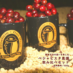 ベジャビスタ農園飲み比べセット【300g×2パック】|珈琲 コーヒー 美味しい コーヒー豆 ドリップ 高級 ブラック サイフォン 珈琲豆 セット スペシャルティコーヒー ドリップコーヒー コーヒ