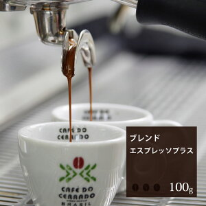 エスプレッソ プラス【100g】 珈琲 コーヒー 美味しい コーヒー豆 焙煎 珈琲豆 豆 スペシャルティコーヒー