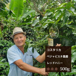 コスタリカ ベジャビスタ農園 レッドハニープロセス【500g】|珈琲 コーヒー 美味しい コーヒー豆 珈琲豆 スペシャルティコーヒー エスプレッソ コスタリカ