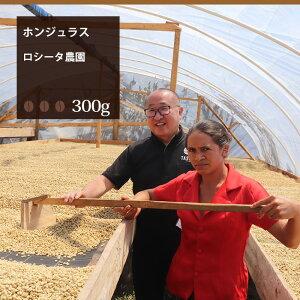 ホンジュラス ロシータ農園【300g】|珈琲 コーヒー 美味しい コーヒー豆 珈琲豆 スペシャルティコーヒー エスプレッソ