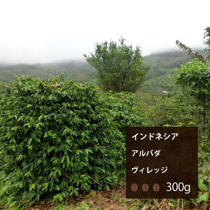 インドネシア アルバダヴィレッジ【300g】|珈琲 コーヒー 美味しい コーヒー豆 高級 ブラック 自家焙煎 ニカラグア 焙煎 珈琲豆 豆