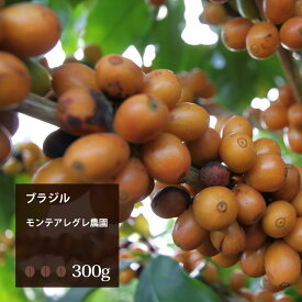 ブラジル モンテアレグレ農園【300g】 珈琲 コーヒー 美味しい コーヒー豆 ドリップ ブラジル 珈琲豆 ドリップコーヒー エスプレッソ