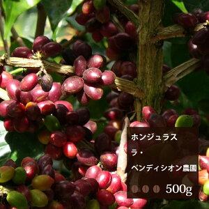 ホンジュラス ラ・ベンディシオン農園【500g】|珈琲 コーヒー 美味しい コーヒー豆 ホンジュラス 焙煎 珈琲豆 豆 エスプレッソ