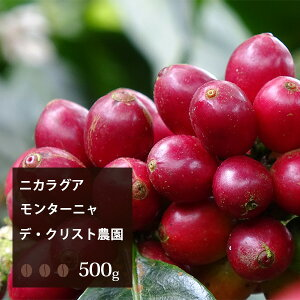 【2020】ニカラグア モンターニャ・デ・クリスト農園【500g】  珈琲 コーヒー 美味しい コーヒー豆 高級 ブラック 自家焙煎 ニカラグア 焙煎 珈琲豆 豆 エスプレッソ お試し
