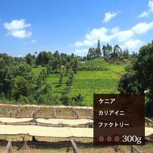 ケニア カリアイニファクトリー【300g】|珈琲 コーヒー 美味しい コーヒー豆 ケニア 焙煎 珈琲豆 豆 エスプレッソ