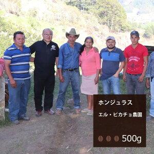 ホンジュラス エル・ピカチョ農園【500g】|珈琲 コーヒー 美味しい コーヒー豆 ホンジュラス 焙煎 珈琲豆 豆 エスプレッソ