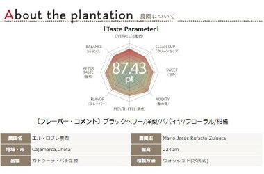 ペルーエルロブレ農園【500g】
