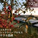 コスタリカ サラカ農園【100g】