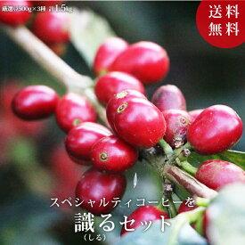 【送料無料】スペシャルティコーヒー豆を識るセット 500g×3パックコーヒー コーヒー豆 珈琲 珈琲豆 スペシャルティ 1.5kg 自家焙煎 お買い得