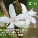ビジャ・ガリシア農園【300g】