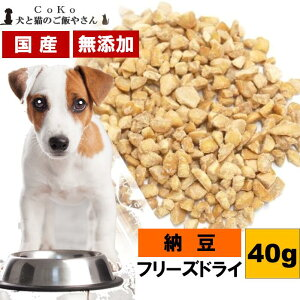 Cokoオリジナル 犬おやつ トッピング 国産フリーズドライ納豆 (40g) Hikiwari Natto for dogs