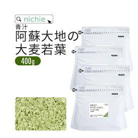 青汁 大麦若葉 大麦若葉青汁 国産 500g 熊本県産 新鮮な 大麦若葉 をすぐ加工し 粉末 にした 無添加 青汁 nichie ニチエー