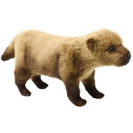 ハンサ【HANSA】ぬいぐるみ ヤブイヌ48 短足癒し系 犬 いぬ 只今在庫切れ 次回入荷は7月の予定