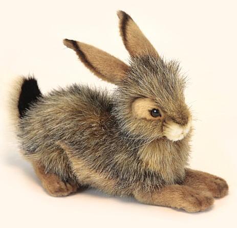 【HANSA】ぬいぐるみオグロウサギ25cm