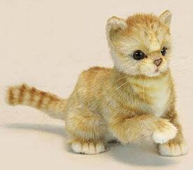ハンサ【HANSA】ぬいぐるみ子ネコ ジンジャー20cm 仔猫 ペット 只今在庫切れ 次回入荷は7月の予定