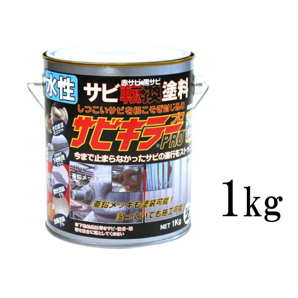 [R] 【エントリー全商品ポイント3倍 4/19〜4/22】 【送料無料】 サビキラーPRO [1kg] BAN-ZI