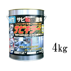 【送料無料】 サビキラーPRO シルバー [4kg] BAN-ZI