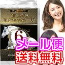 Horseplacenta_6m1