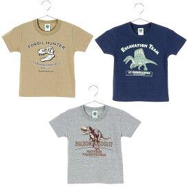 子供 恐竜 Tシャツ 110サイズ ミュージアムデザイン