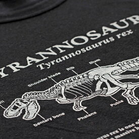 【Lサイズ Tシャツ サイエンスデザイン】動物 恐竜 サメ 古代魚 シーラカンス オオカミ ティラノ スピノ 洋服 トップス