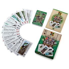 昆虫 リアル ビートル トランプ 甲虫クイズ付き 子供 知育玩具 ゲーム